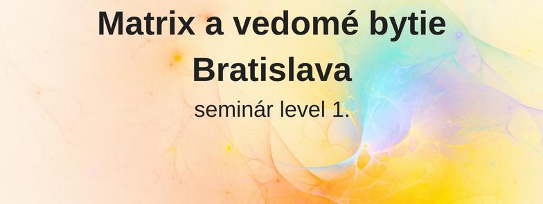 level 1 - Matrix a vedomé bytie, Bratislava