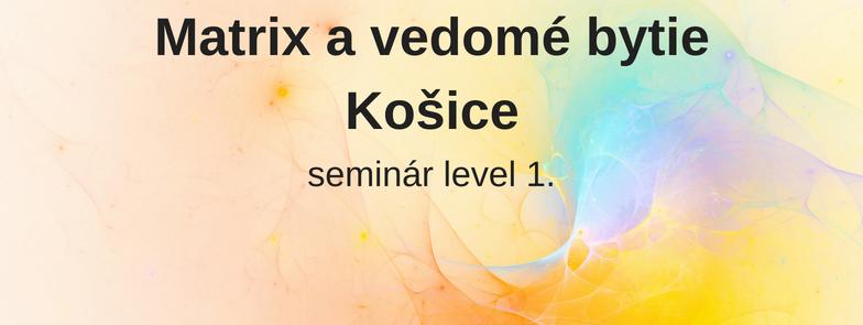 level 1 - Matrix a vedomé bytie, Košice