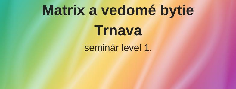 level 1 - Matrix a vedomé bytie, Trnava